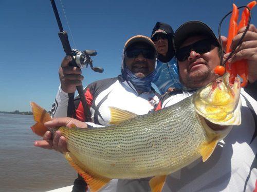 Salio pesca con los amigachos de campana!!!le metimos la mejor y algo salio el rio amaga a mejorar..seguimos mañana.