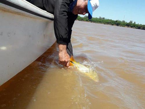 Pesca de sábado con la gente de Uruguay!!!!buen triooo con el guia leandro se viene activando.